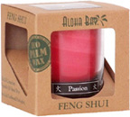 Fire Passion Feng Shui