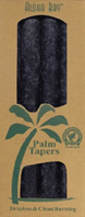Unscented Palm Taper Honey Charcoal 9 inch 4 Pack Aloha Bay