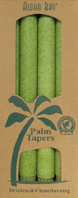 Unscented Palm Taper Melon Green 9 inch 4 Pack Aloha Bay