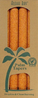 Unscented Palm Taper Orange 9 inch 4 Pack Aloha Bay