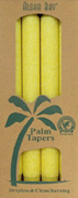 Unscented Palm Taper Yellow 9 inch 4 Pack Aloha Bay